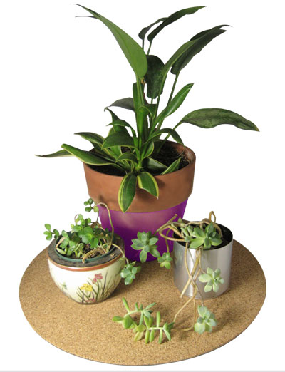 "19"" dia. Cork Plant Mat - 1 in pack - Free shipping"