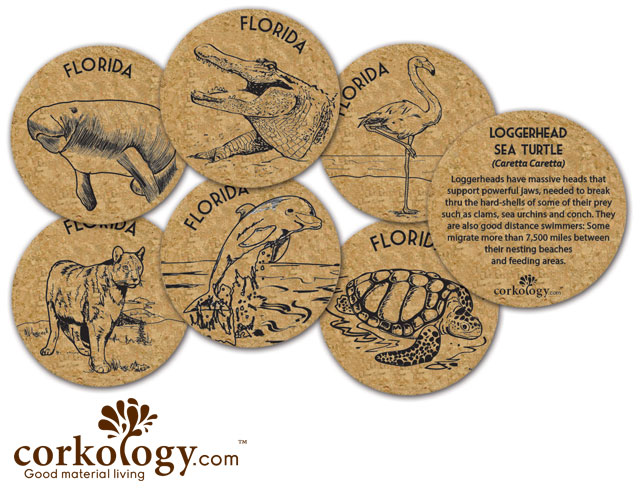 Florida Cork Coaster Set - Free Shipping!